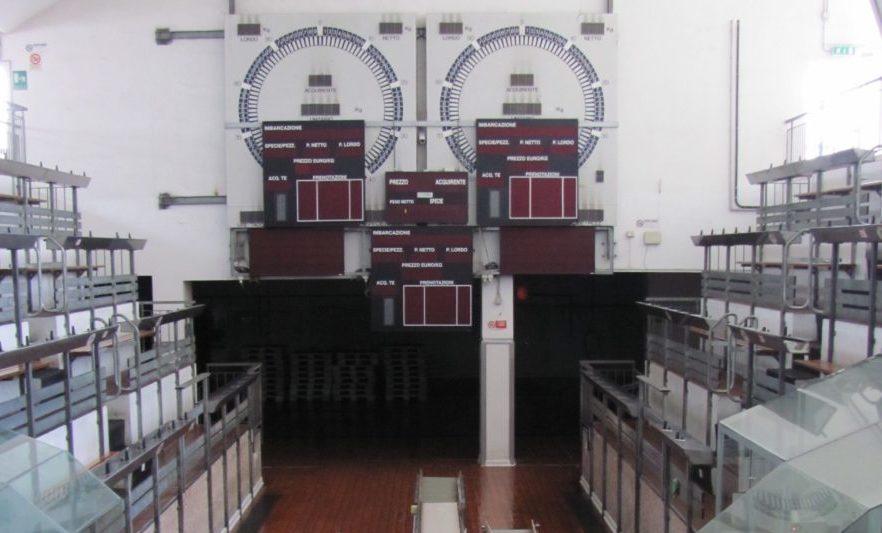 Mercato Ittico porto ancona