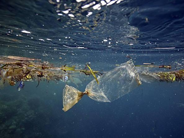 Regione Toscana Stabilimenti balneari no plastica